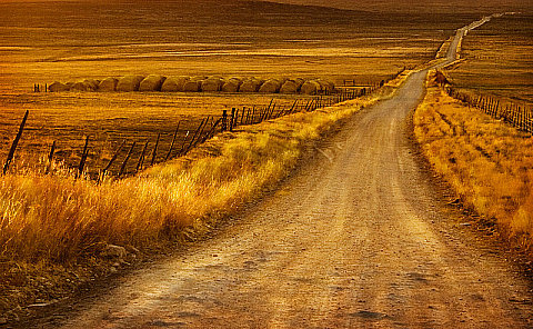 Long Dusty Road, by Deanna Esplin