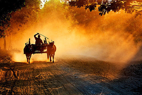 Dusty Evening !!!, by Aung Pyae Soe