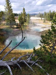 Bluebell Pool Yellowstone