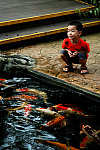 Boy with fishes