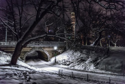 Central Park after Snow