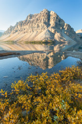 Fall-Reflections-5D-0413.jpg