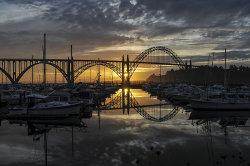 Port of Newport, OR.jpg