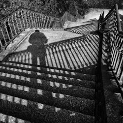 SHADOWS IN THE STAIRS