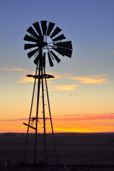 Sunset Windmill.jpg