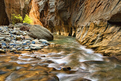 THE ZION NARROWS